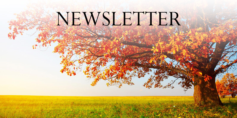 Newsletter - Autumn 2018